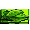 Bush Leaves-icon
