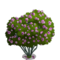 Desert Willow Tree-icon