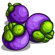 Mangosteen-icon