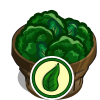 Organic Broccoli Bushel-icon