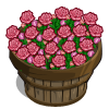 Pink Rose Bushel-icon
