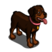 Rottweiler-icon