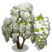 White Wisteria Tree-icon