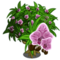 Bamboo Orchid Tree-icon