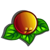 Golden Cranberries-icon