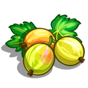 Gooseberry-icon
