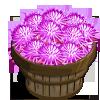 Mist Flower Bushel-icon