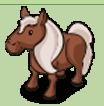 Braunes Pony-icon