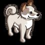 Cream Shiba Inu-icon