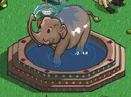 Elephantfountain