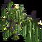 Mossy Tree-icon