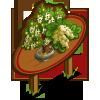 Andromeda Bonsai Tree Mastery Sign-icon