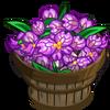 Butterfly Orchid Bushel-icon