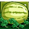 Super Yellow Melon-icon