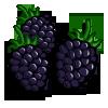 Black Berries-icon