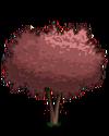 Cherry Plum Tree1-icon