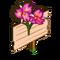 Hawaiian Orchid Mastery Sign-icon