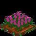 Lilac extra100