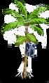 Acai Tree4-icon.png