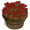 Red Tulip Bushel-icon