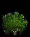 Cocoa1-icon