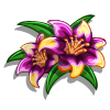Sorcerers Lily-icon