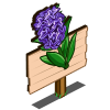 Bugleweed Mastery Sign-icon