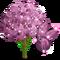 Fairy Plum Tree-icon