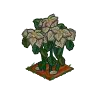 Wither Bunch White Poinsettia-icon