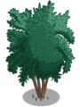 Angel Red Pomegranate Tree1-icon.png