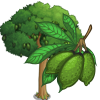Ceiba Tree-icon