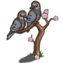 Mourning Doves-icon