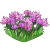 Thistle Flowers-icon