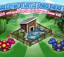 Turtle Pen