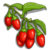 Red Goji Berry-icon