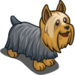 Silky Terrier-icon