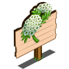 Queen Annes Lace Mastery Sign-icon