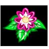Bloomed Dahlia-icon