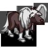 Chinese Crested Dog-icon