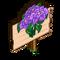 Purple Poinsettia Mastery Sign-icon