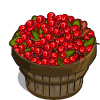 Cove Cranberry Bushel-icon