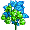 Green Crystal Pear-icon
