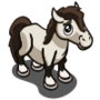 Reitpony Foal-icon