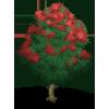 Gum Tree-icon