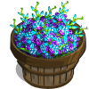 Peacock Orchid Bushel-icon