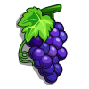 Shiraz Grape-icon