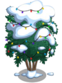 Angel Red Pomegranate Tree9-icon.png