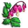 Bleeding Heart-icon