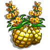 Pineapple Orchid-icon