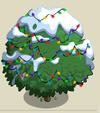 Alma Fig Tree9-icon